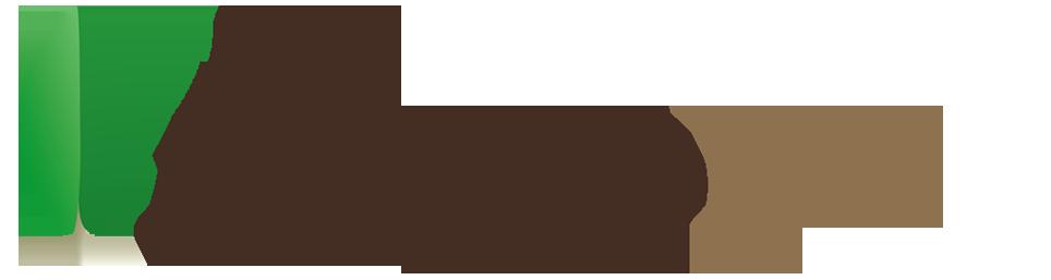 Formation MongoDB pour développeur